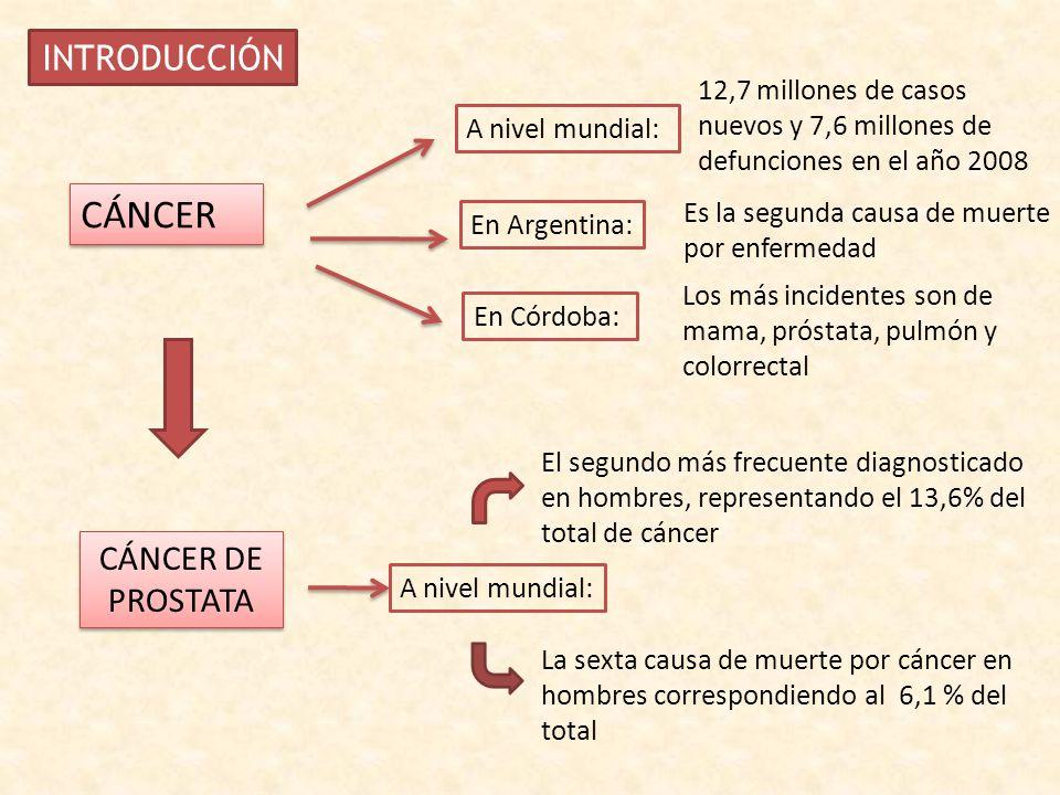 lácteos cáncer de próstata