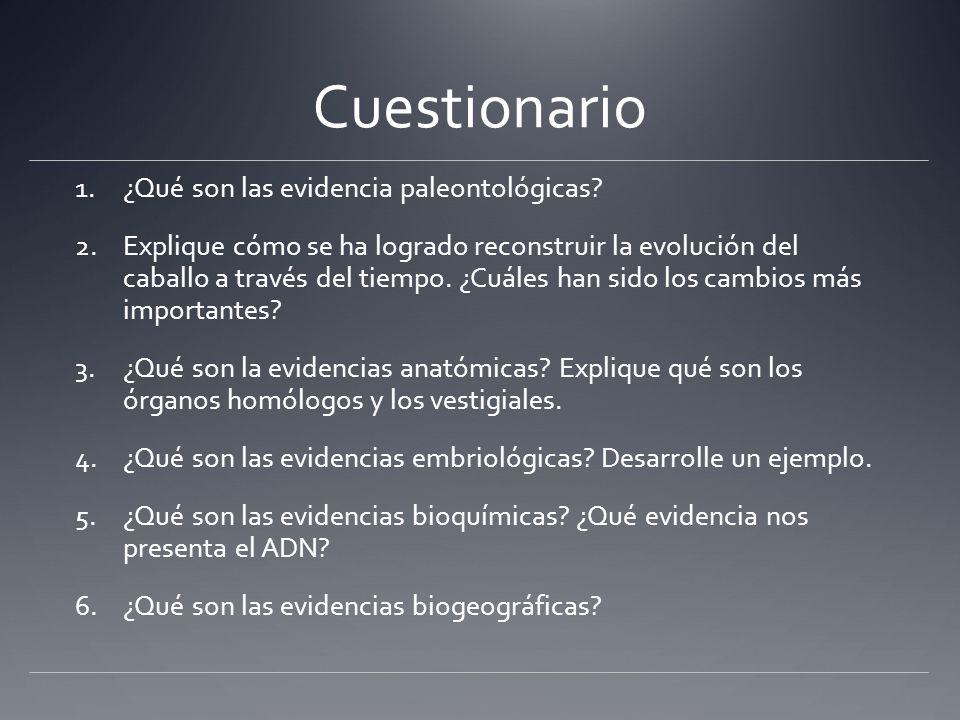 Cuestionario 1.¿Qué son las evidencia paleontológicas? 2.Explique ...