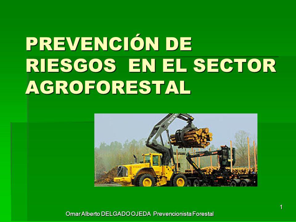 1 Omar Alberto DELGADO OJEDA Prevencionista Forestal 1 PREVENCIÓN DE  RIESGOS EN EL SECTOR AGROFORESTAL a8099baac4