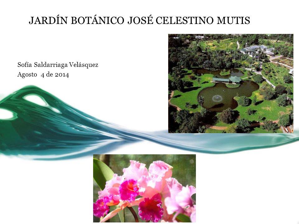 JARDÍN BOTÁNICO JOSÉ CELESTINO MUTIS Sofía Saldarriaga Velásquez ...