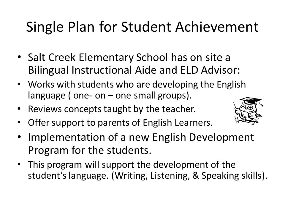 Single Plan for Student Achievement Salt Creek Elementary School has on site a Bilingual Instructional Aide and ELD Advisor: Works with students who are developing the English language ( one- on – one small groups).