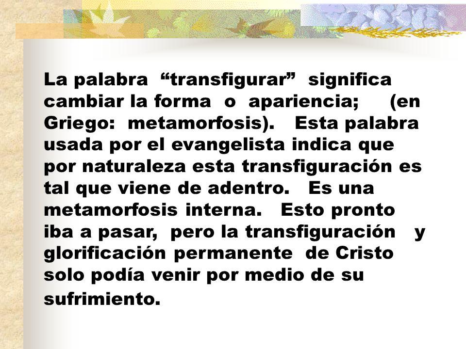 Resultado de imagen para TRANSFORMERS TRANSFIGU