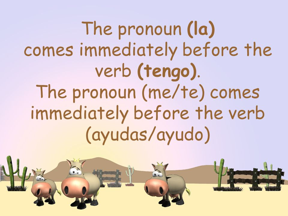 The pronoun (la) comes immediately before the verb (tengo).