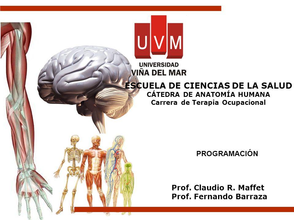 Prof. Claudio R. Maffet Prof. Fernando Barraza ESCUELA DE CIENCIAS ...