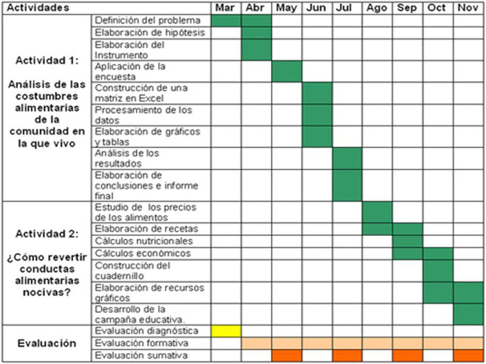 cronograma de actividades 10 11