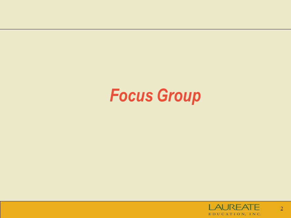 2 Focus Group