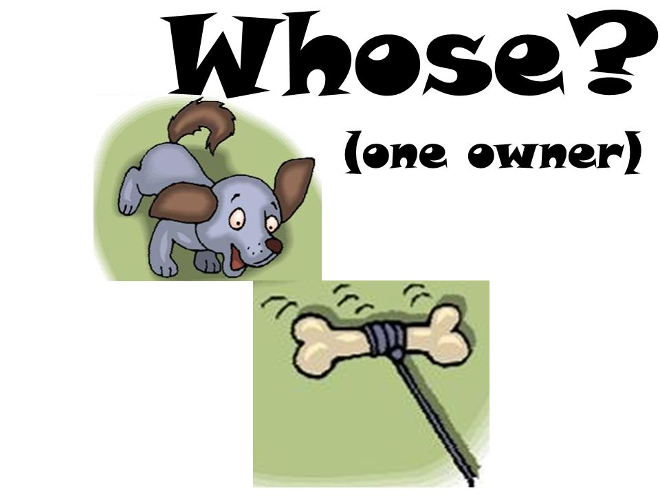 (one owner) Whose