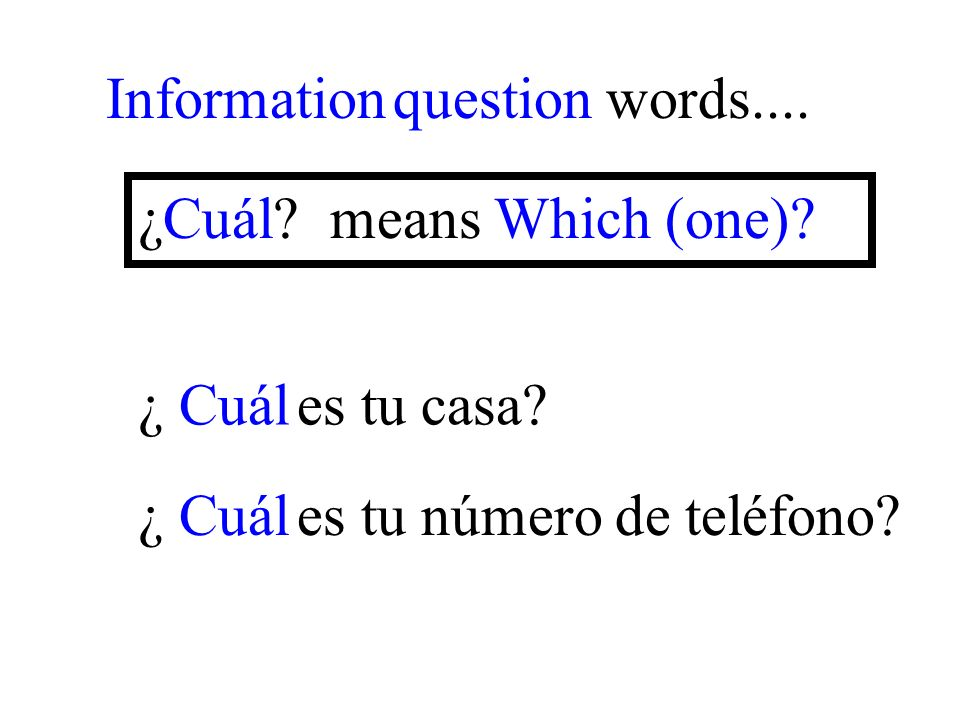 ¿ Cuál es tu número de teléfono. Information question words....