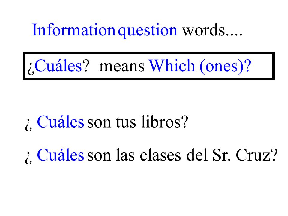¿ Cuáles son las clases del Sr. Cruz. Information question words....