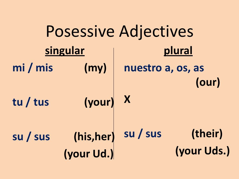 Posessive Adjectives singular mi / mis(my) tu / tus(your) su / sus (his,her) (your Ud.) plural nuestro a, os, as (our) X su / sus (their) (your Uds.)