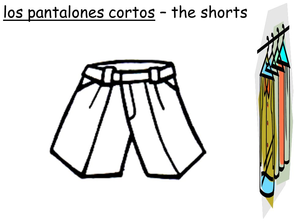 los pantalones cortos – the shorts