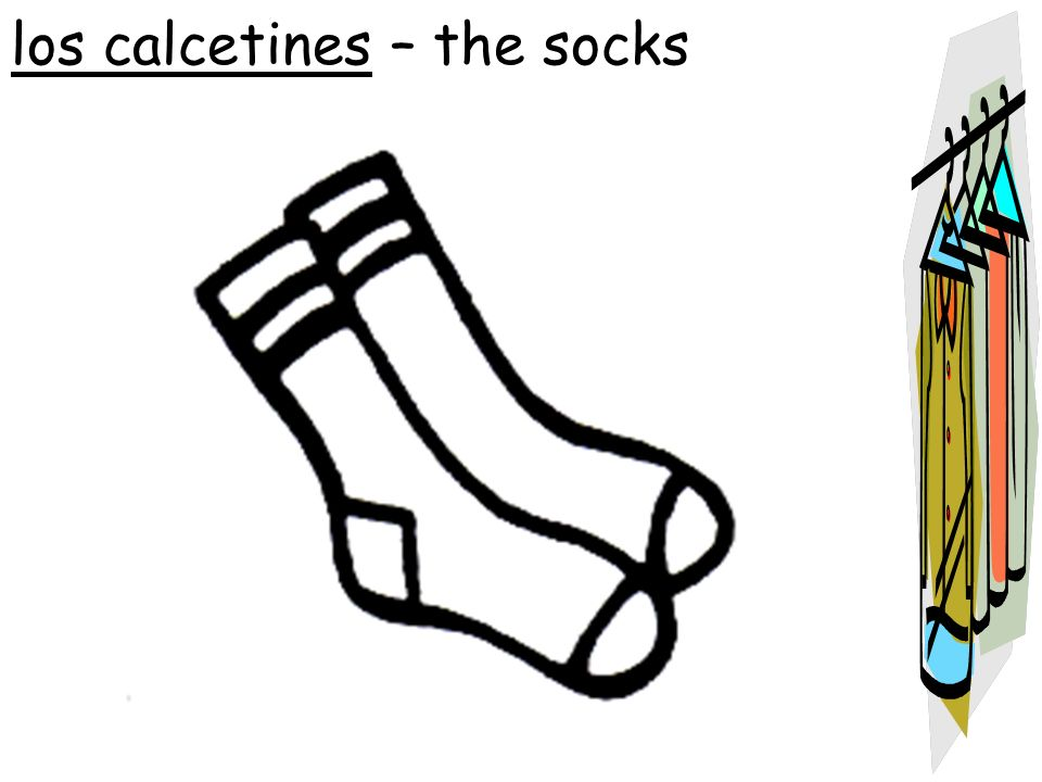 los calcetines – the socks