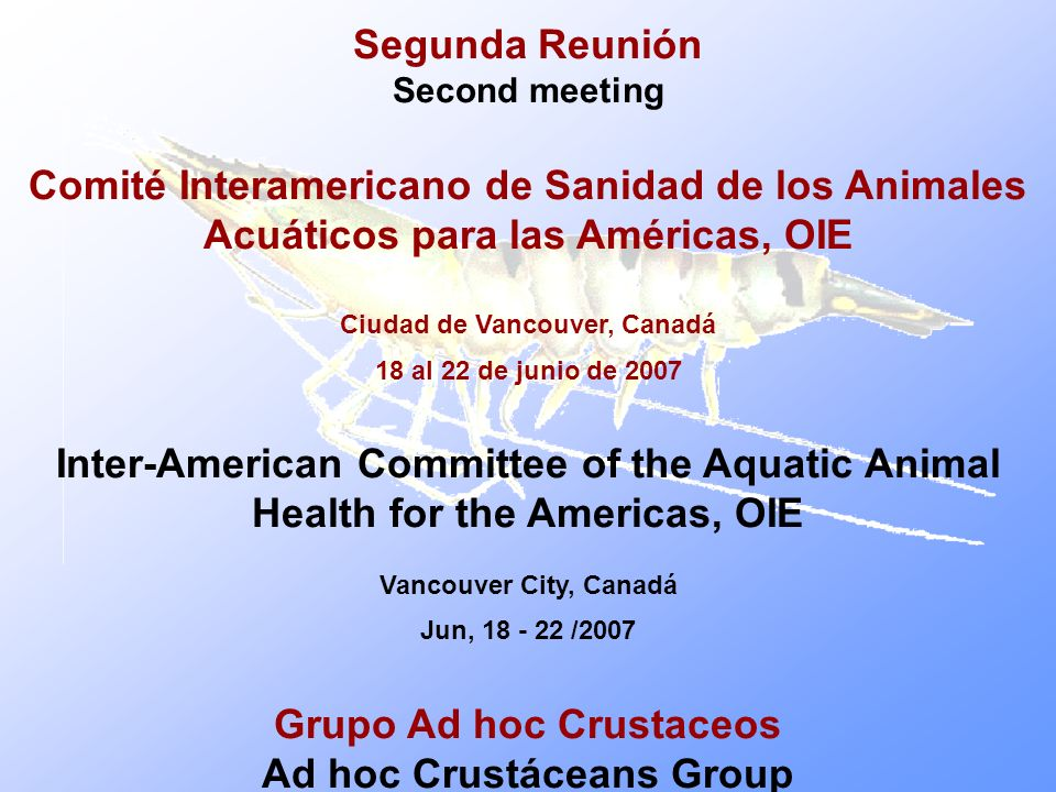 Segunda Reunión Second meeting Comité Interamericano de Sanidad de los Animales Acuáticos para las Américas, OIE Ciudad de Vancouver, Canadá 18 al 22 de junio de 2007 Inter-American Committee of the Aquatic Animal Health for the Americas, OIE Vancouver City, Canadá Jun, /2007 Grupo Ad hoc Crustaceos Ad hoc Crustáceans Group