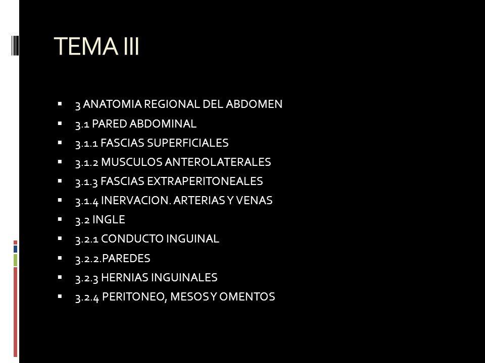 Universidad Central del Este Programa MED-042 Anatomía II Es la ...