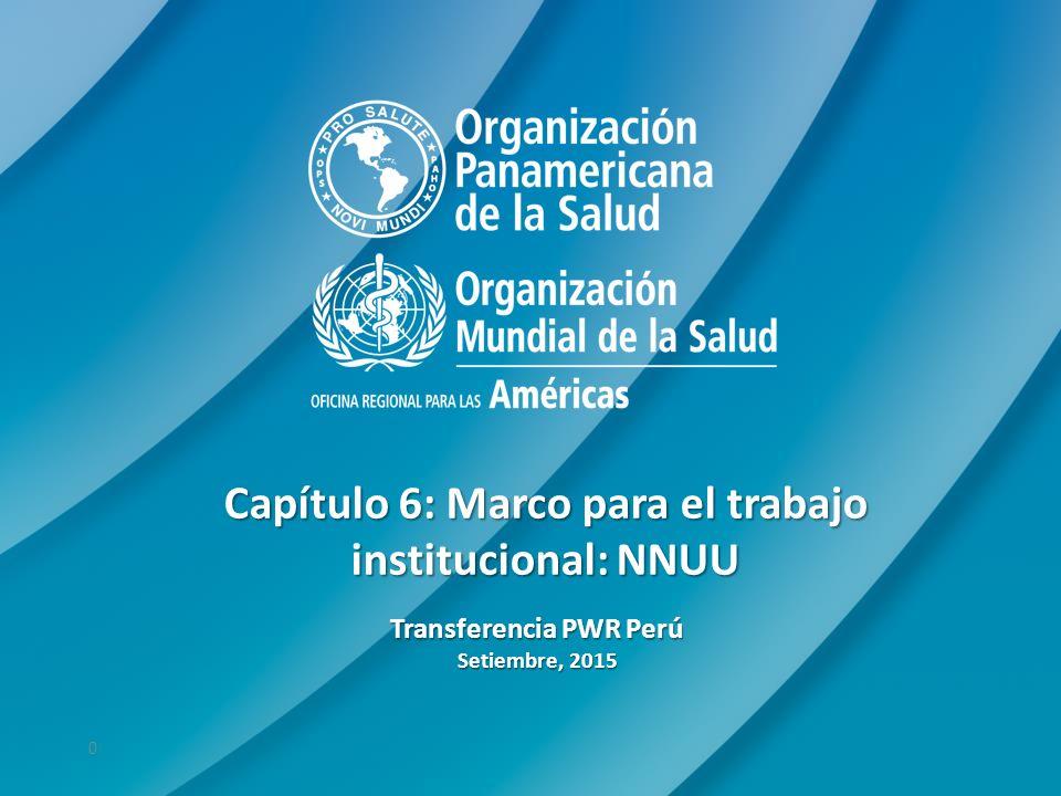 0 Capítulo 6: Marco para el trabajo institucional: NNUU ...