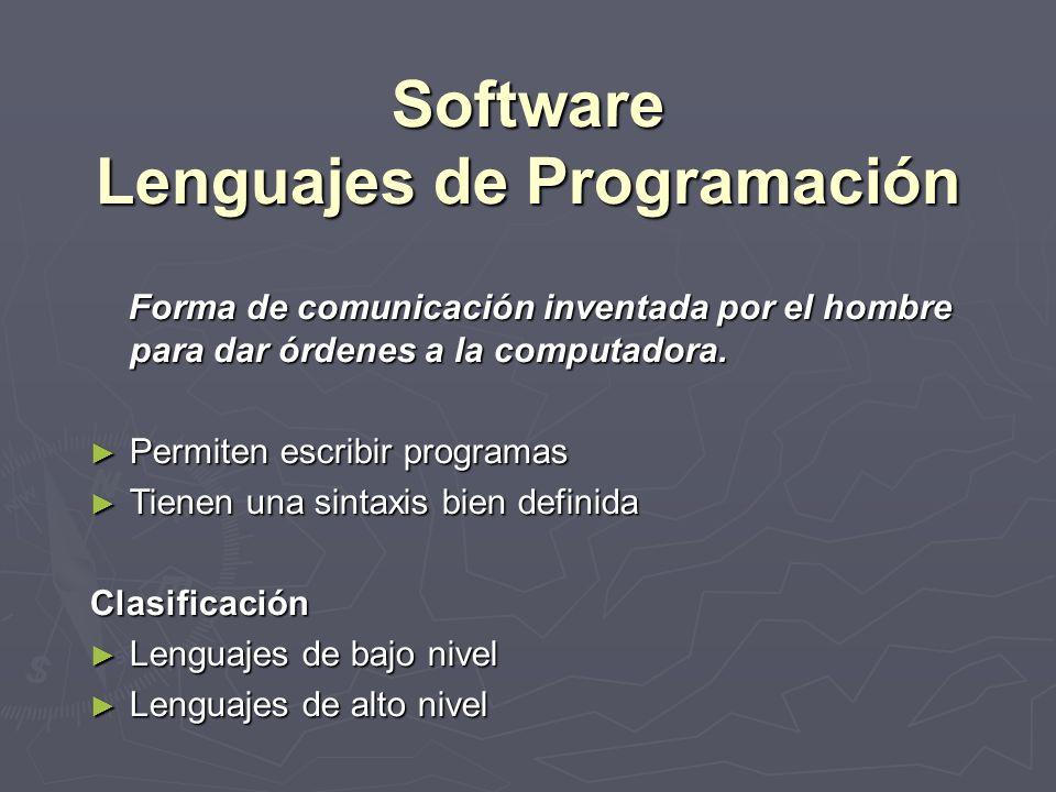 Software Conjunto De Programas Que Le Indican Al Computador Que