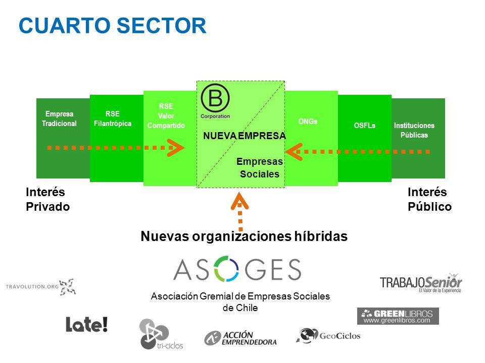 La Nueva Empresa: El surgimiento del Cuarto Sector en Chile ...