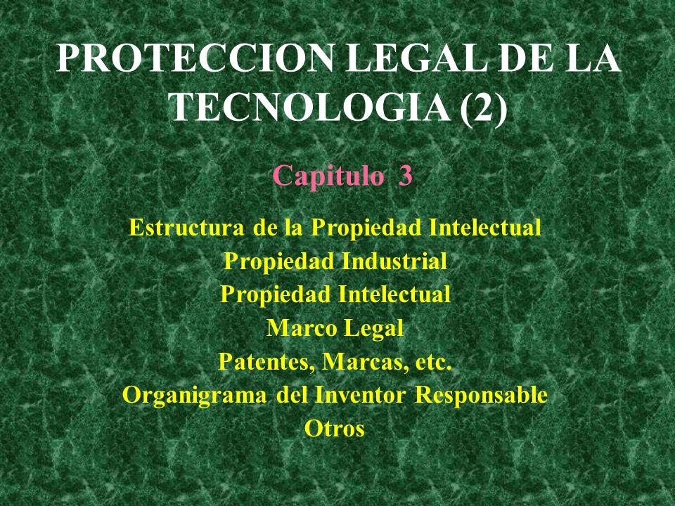 PROTECCION LEGAL DE LA TECNOLOGIA (2) Estructura de la Propiedad ...