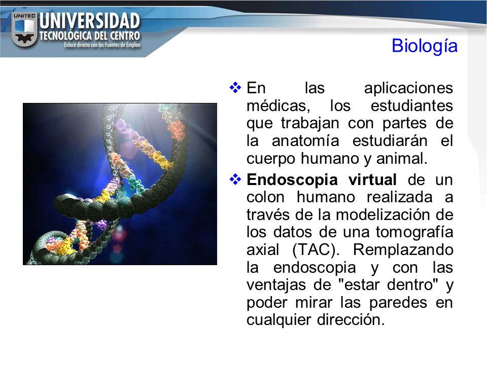 Atractivo Aplicación Virtual De La Anatomía Colección - Anatomía de ...
