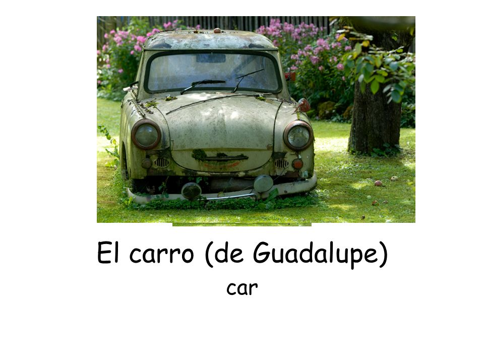 El carro (de Guadalupe) car