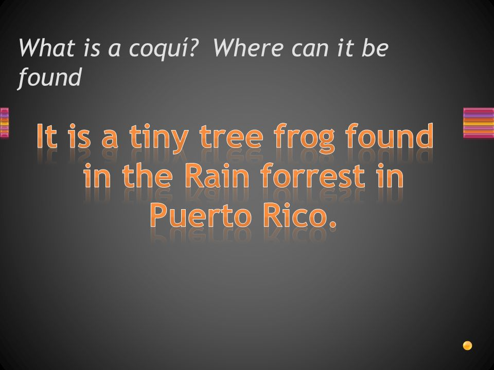 What is a coquí Where can it be found