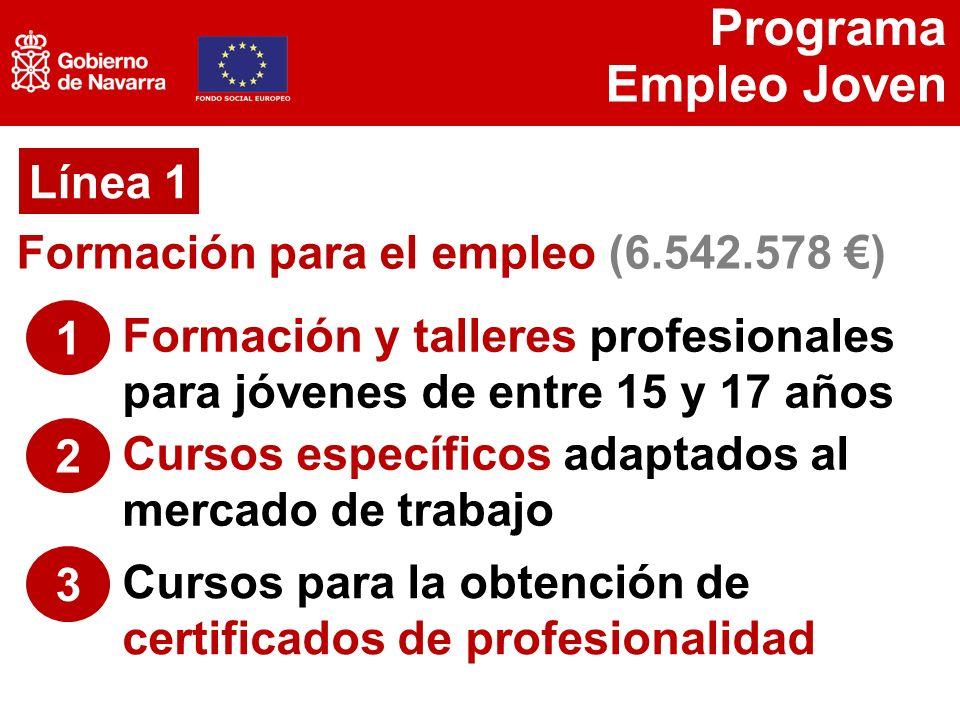 Programa Empleo Joven Programa Empleo Joven Objetivo Mejora De Las
