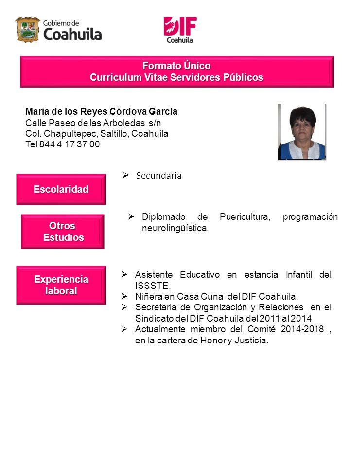 Formato Unico Curriculum Vitae Servidores Publicos Escolaridad