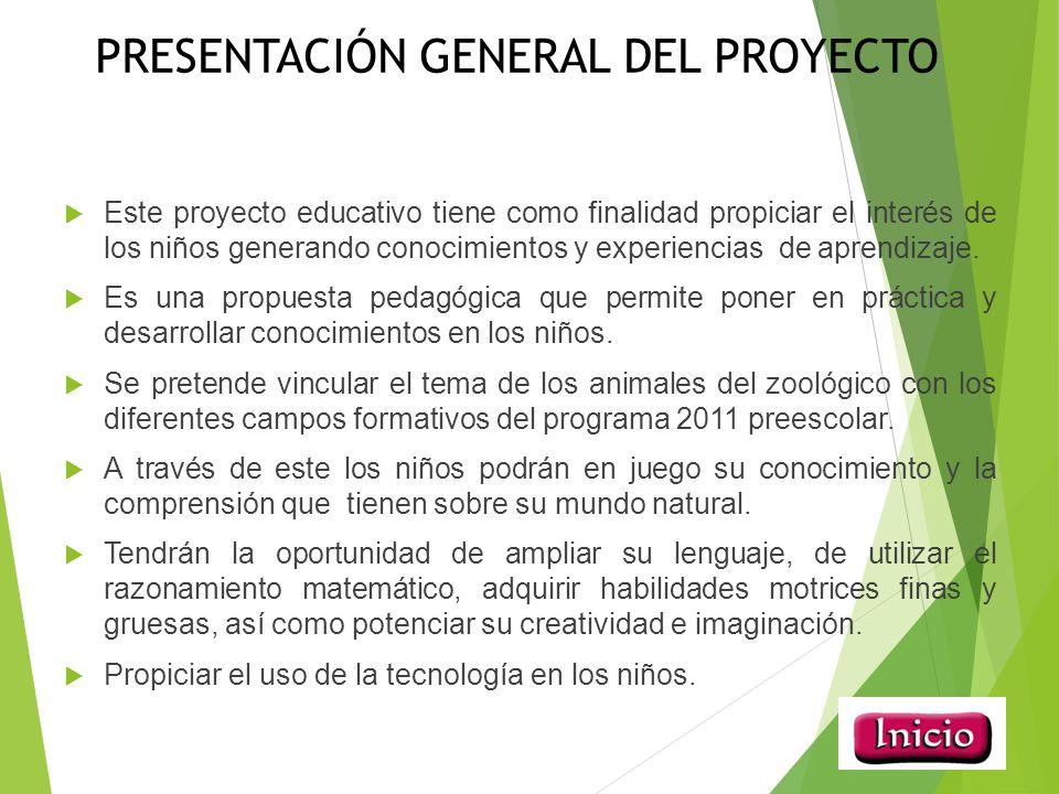 presentacion general del proyecto proposito del proyecto estrategias