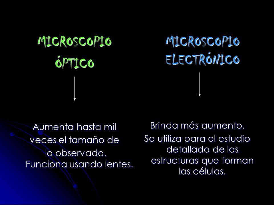 que es un ser vivo microscópico