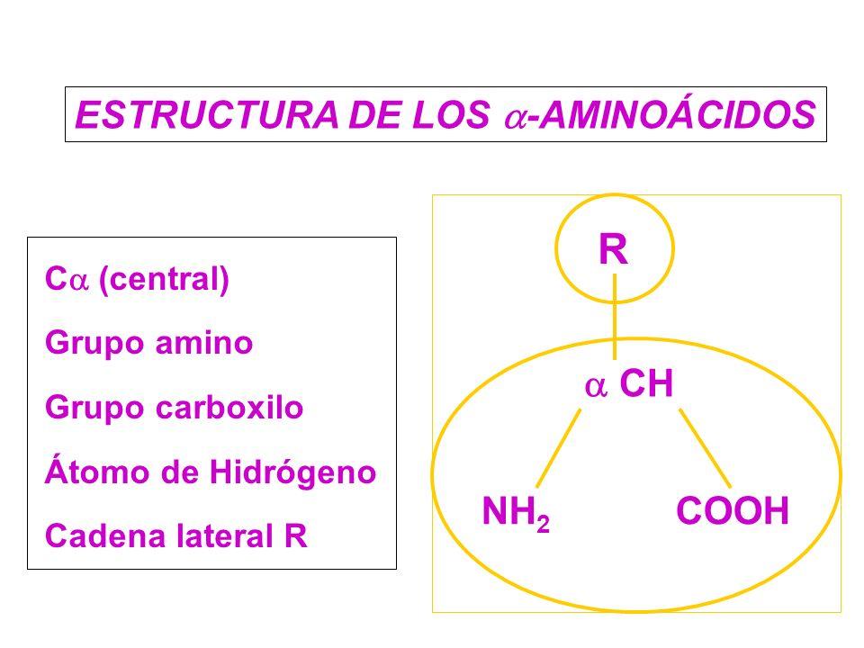 Química Biológica Clase I Y Ii Estructura De Los