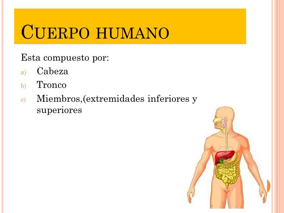 UNIDAD I. L A ALIMENTACIÓN Y LA SALUD El cuidado del cuerpo humano ...