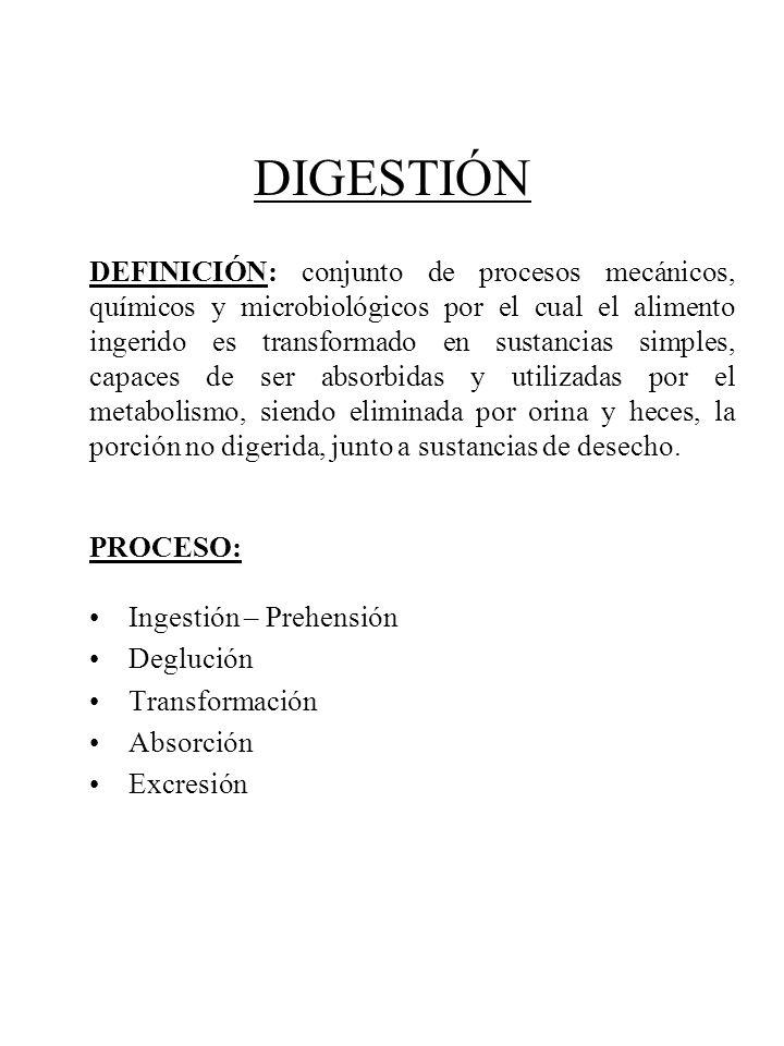 DEFINICIÓN: conjunto de procesos mecánicos, químicos y ...