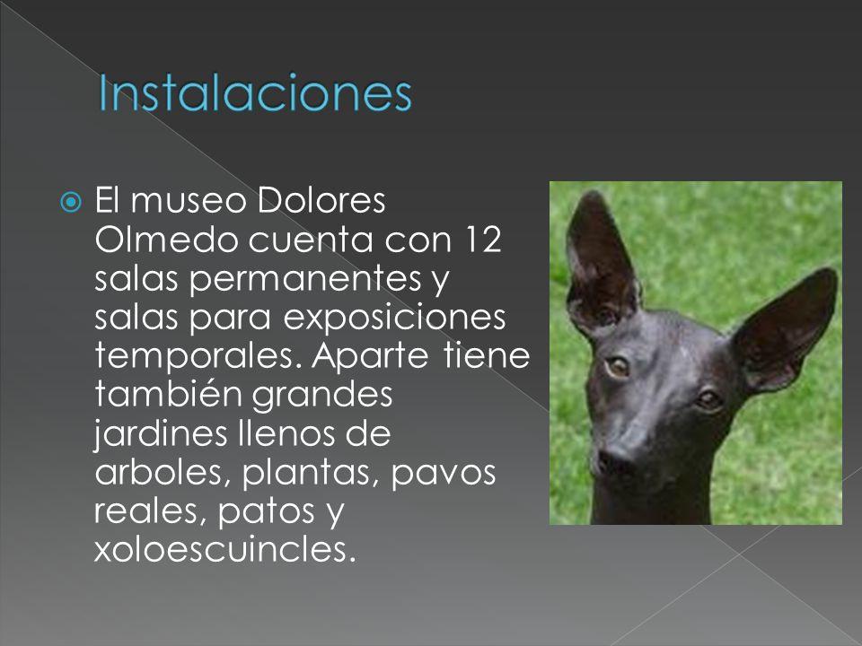 Dolores Olmedo fue una coleccionista y filántropa que dedico