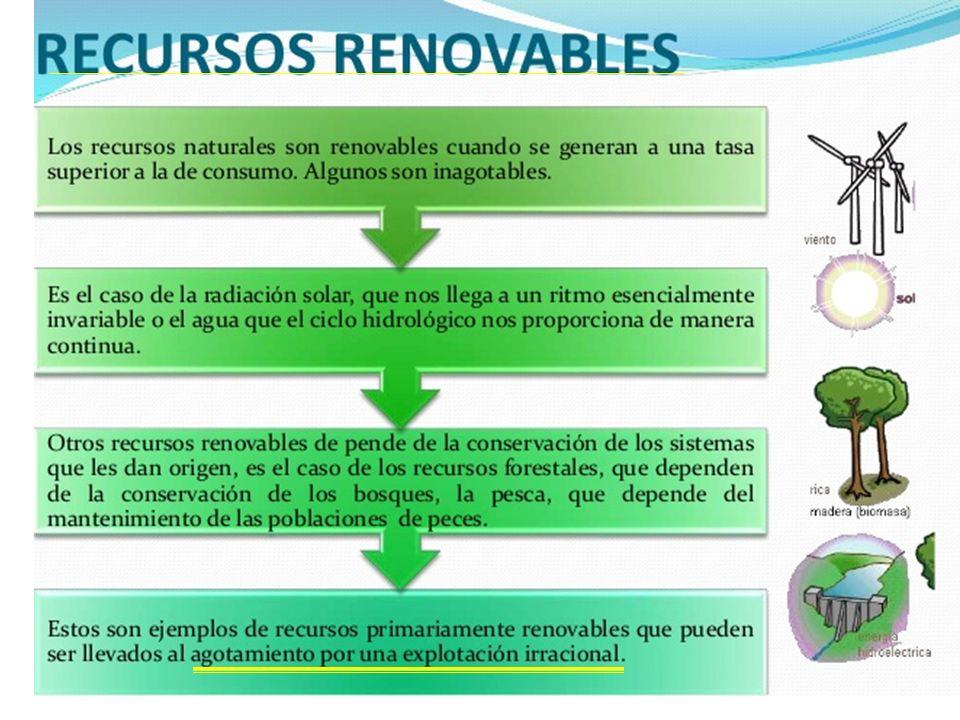 RECURSOS NATURALES. - ppt video online descargar