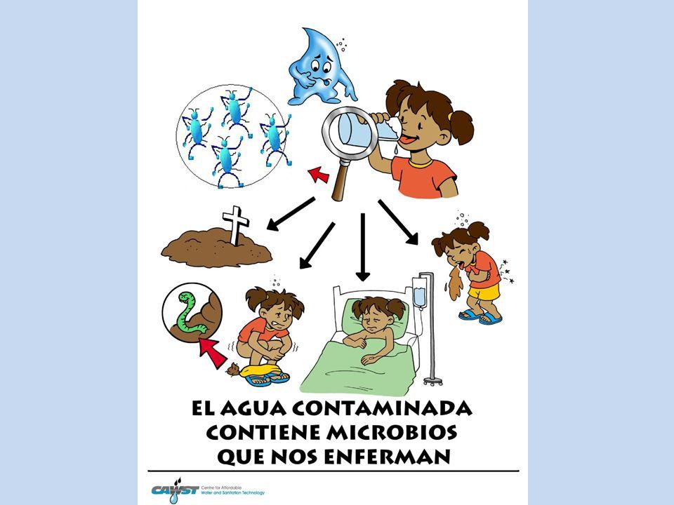 enfermedades transmitidas por el agua contaminada