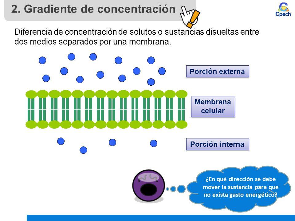 PPTCES004CB31-A10V1 Clase Membrana celular: modelo de organización ...