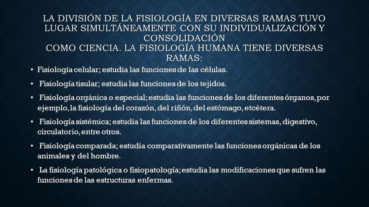 INTRODUCCIÓN A LA ANATOMÍA Y FISIOLOGÍA HUMANA INTRODUCCIÓN A LA ...