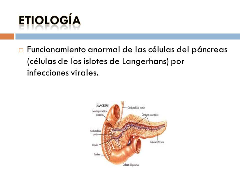 diabetes etimologia definicion
