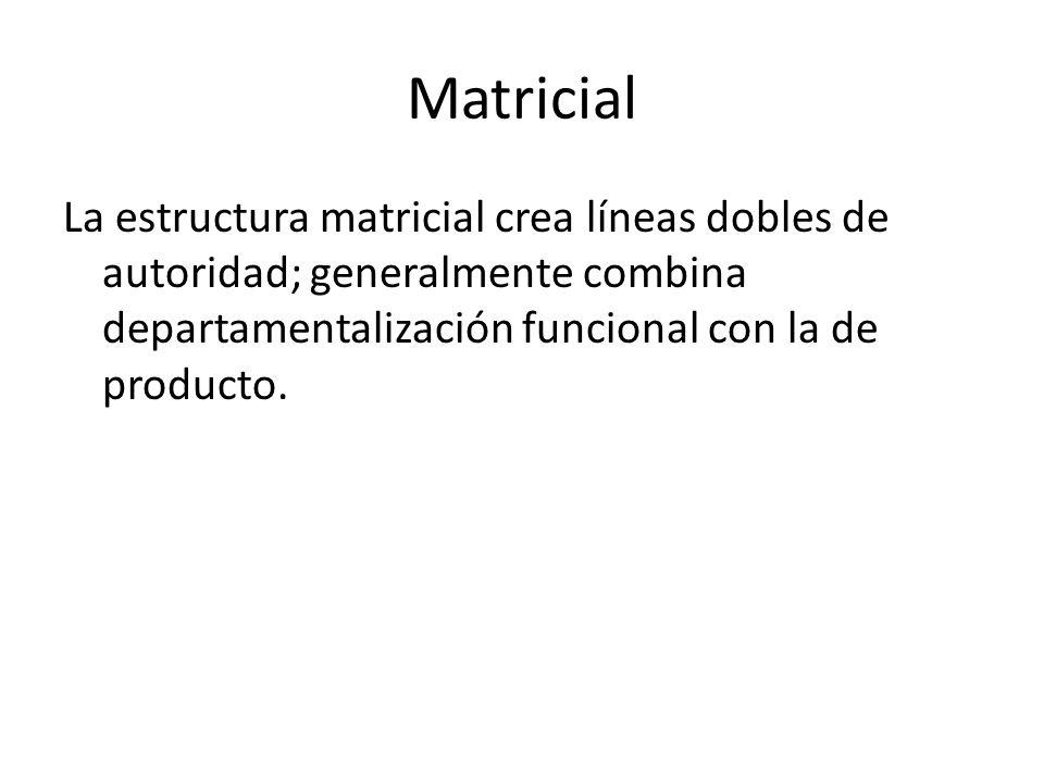 Estructuras Organizacionales Estructura Organizacional