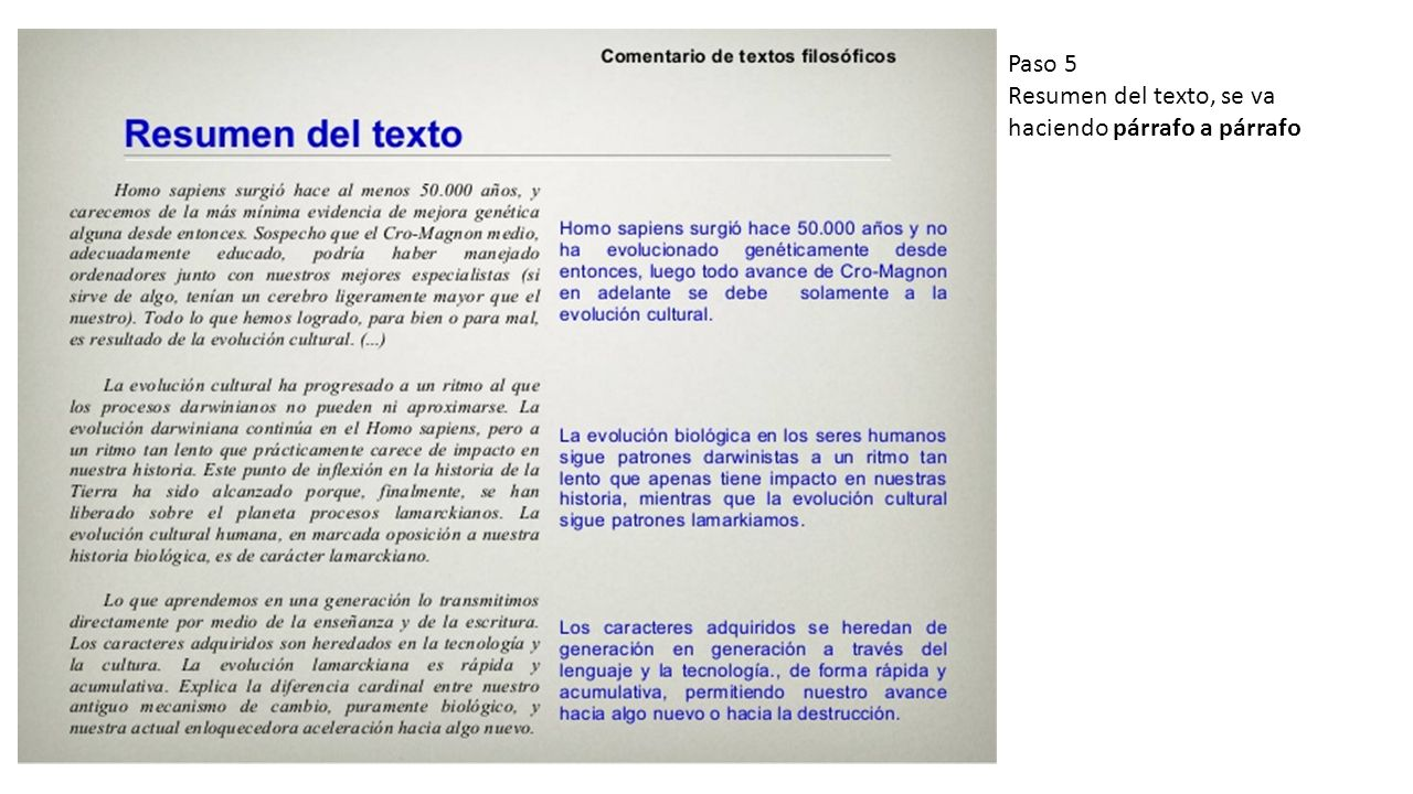 Ejemplo Con Un Texto De Stephen Jay Gould Filosofia Antropologia