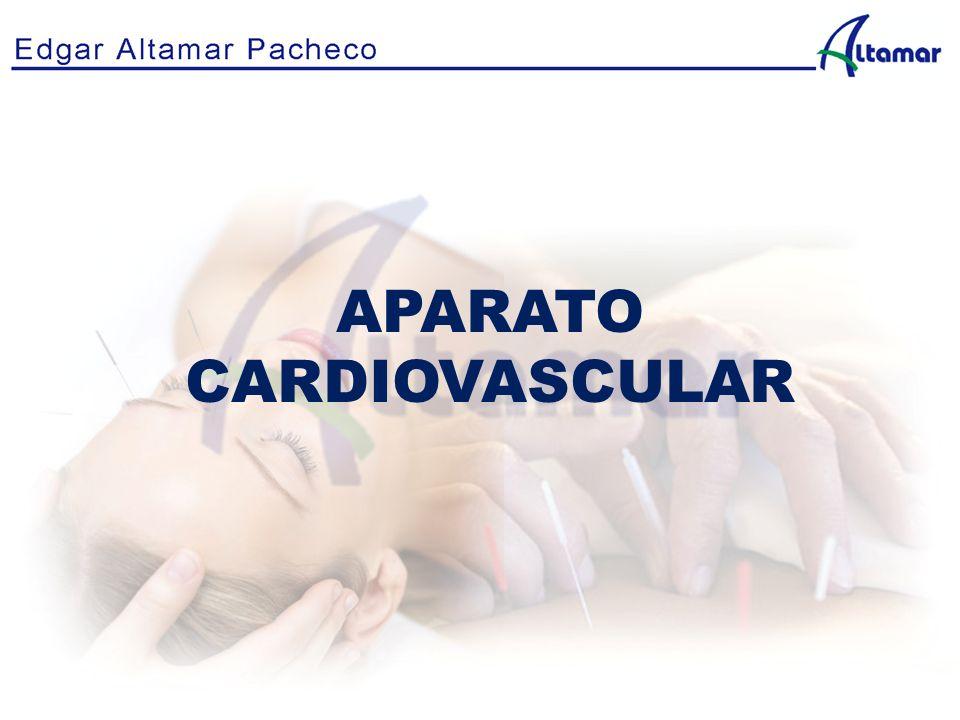 APARATO CARDIOVASCULAR. Anatomía y fisiología del aparato ...
