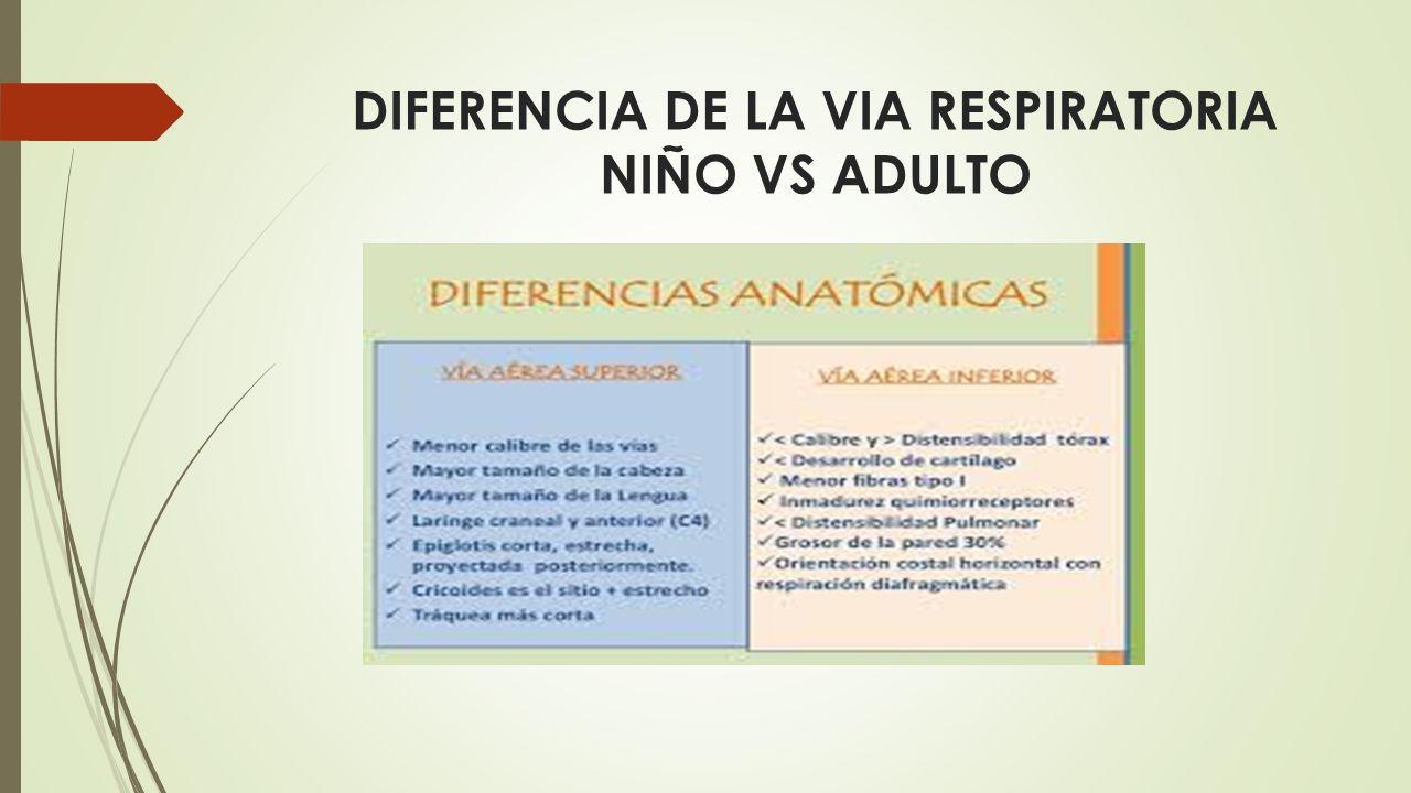 ANATOMIA DE LA VIA AEREA  DR. GERARDO GOMEZ LOPEZ  R1 DE ...