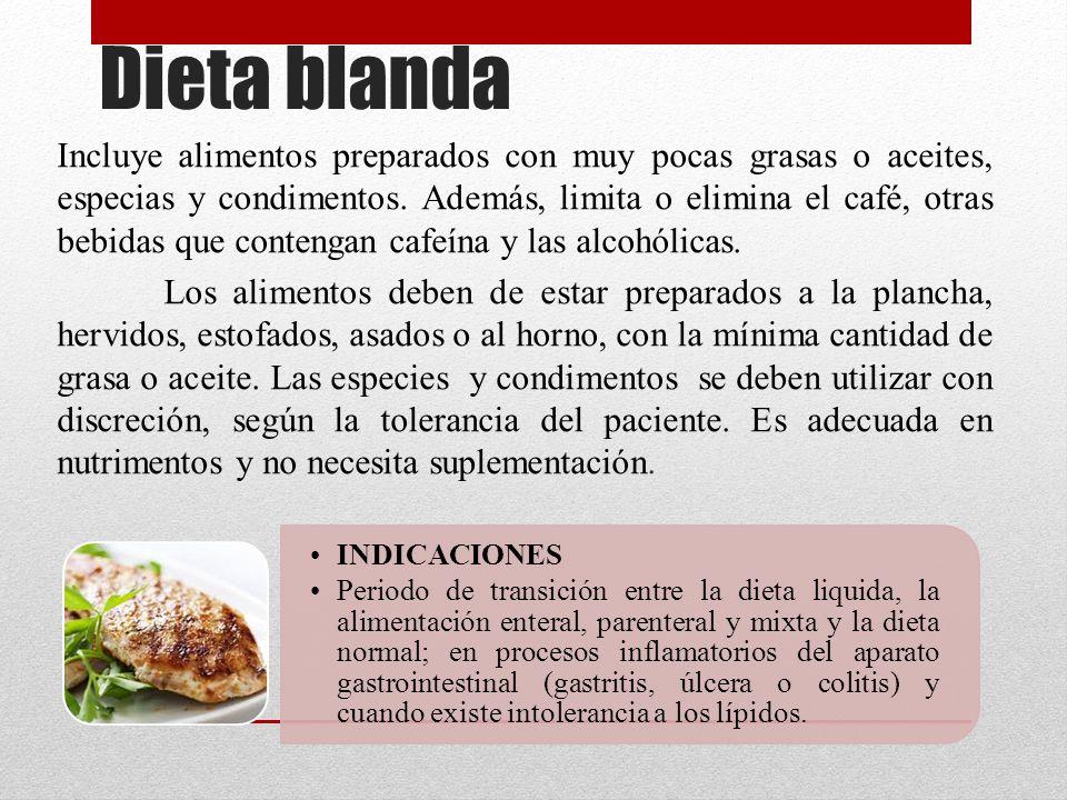 Ejemplo de dieta blanda quimica