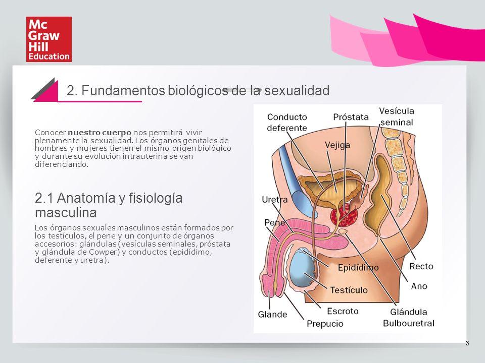 TEMA 7 PSICOLOGÍA. Unidad 12 La sexualidad humana. - ppt descargar