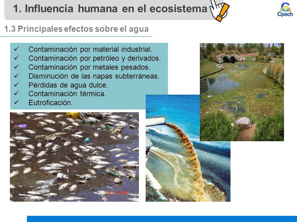 PPTCES028CB31-A16V1 Clase Influencia humana en el ecosistema ...