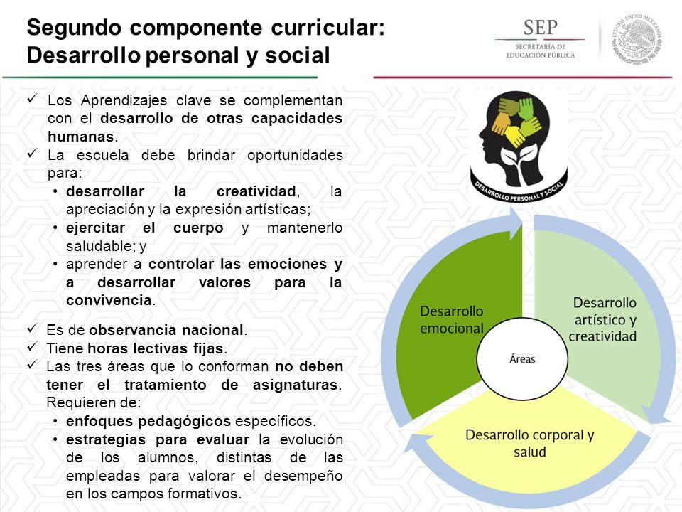 El Modelo Educativo Y La Propuesta Curricular En La