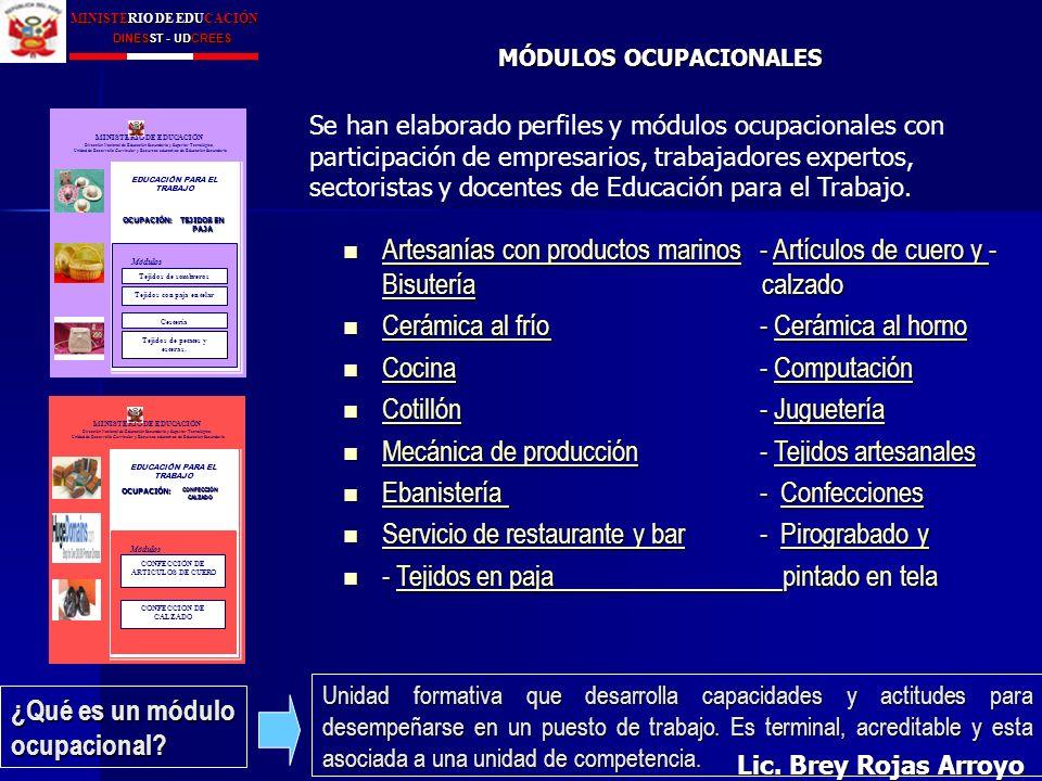 Ministerio De Educación Dinesst Udcrees Lic Brey Rojas