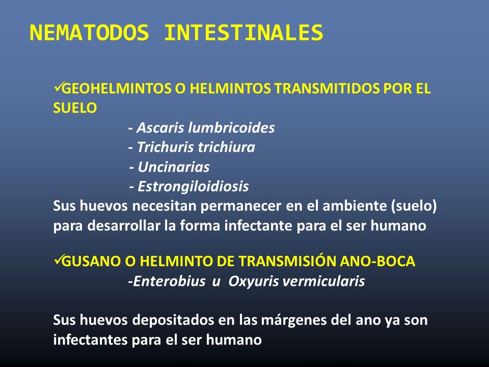 enterobiasis elemento infectante