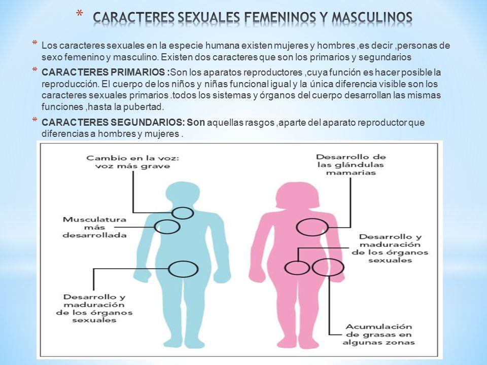 Sexualidad femenina y masculina