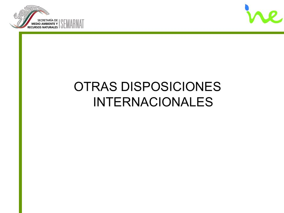 OTRAS DISPOSICIONES INTERNACIONALES